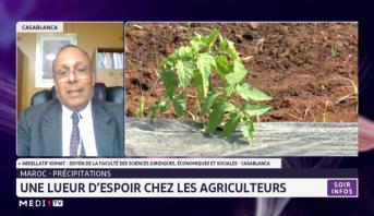 Maroc- précipitations: une lueur d'espoir chez les agriculteurs