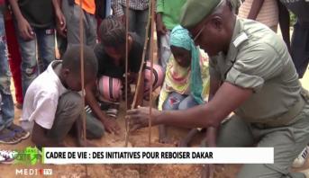 Croissance Verte > Cadre de vie .. Des initiatives pour reboiser Dakar