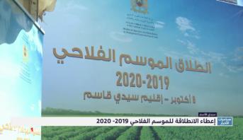 المغرب .. تدابير لإنجاح الموسم الفلاحي 2020-2019