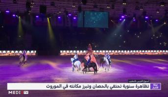 المغرب .. تظاهرة سنوية تحتفي بالحصان وتبرز مكانته في الموروث