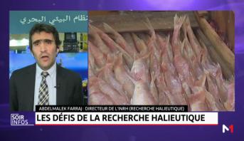 Abdelmalek Farraj: La ceinture bleue, une approche holistique