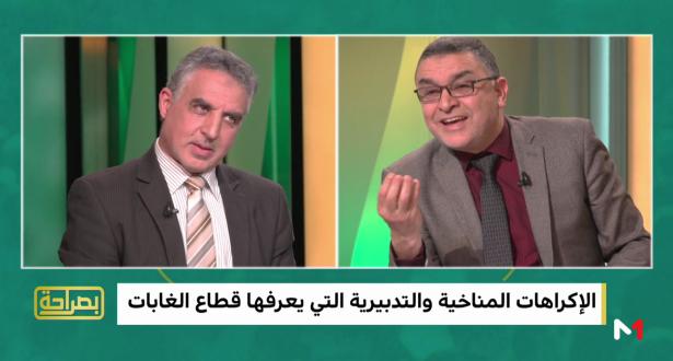 محمد أنضيشي من المندوبية السامية للمياه والغابات: قطاع الغابات يعرف إكراهات تدبيرية