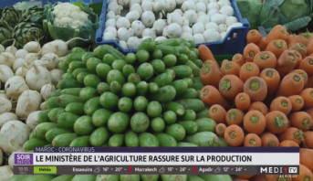 Maroc-coronavirus: le ministère rassure sur la production